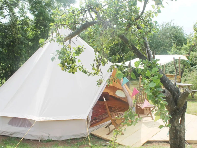 Plum Tree Glamping